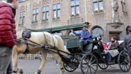 Cart, horses and tourists at Burg, Bruges, Belgium. Stock Footage