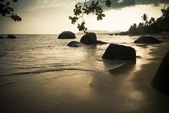 Romantic Sunset on sandy beach - stock photo