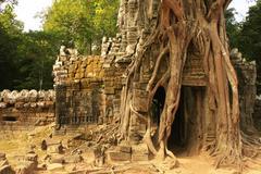 Ta som temple, angkor area, siem reap, cambodia Stock Photos