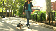 A young woman talks on the phone while she walks her dog - stock footage