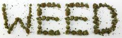 Weed Spelled With Marijuana - stock photo