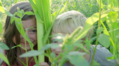 A little boy gets tickled by his older sister while they pay in a corn field Stock Footage