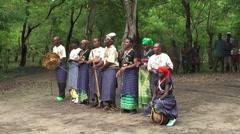 Maasai traditional musicians and orchestra starting playing, Tanzania - stock footage