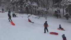People having Fun Sledding in Winter, Families with Children Sledging Stock Footage