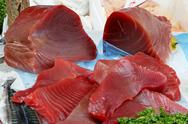 Stock Photo of Raw tuna fillets