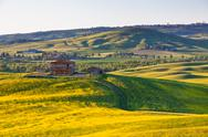 Stock Photo of outdoor tuscan val d orcia green and yellow hills