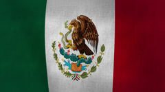 Mexico Flag Background Textured (Loop-able) Stock Footage