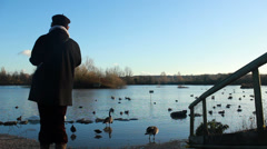 Pleasures of retirement. Lady watching birds at lake (model release) Stock Footage