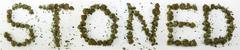 Stoned Spelled With Marijuana - stock photo