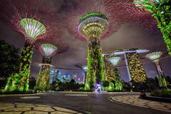 Night view of Gardens by the Bay, Singapore Stock Photos