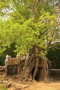 ta som temple, angkor area, siem reap, cambodia - stock photo