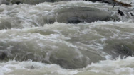 Stock Video Footage of Turbulent Rapids River Stream