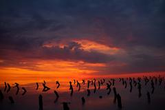 alarming sunset over the lake - stock photo