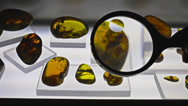 Stock Video Footage of Amber stones
