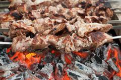 Kebabs on coals Stock Photos