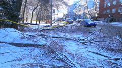 Fallen Trees on Road After Winter Ice Storm - stock footage