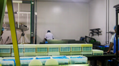 Chesse factory Stock Footage