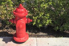 red fire hydrant in florida - stock photo