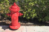 Stock Photo of red fire hydrant in florida