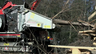 Stock Video Footage of Machine pulls the tree to the chopping into particles