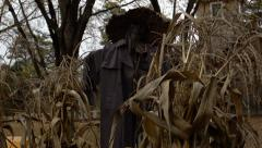 Creepy Scarecrow Stock Footage