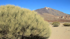 Volcano Teide in Teide National Park Stock Footage