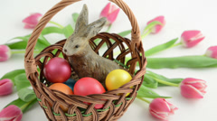 Zoom basket with easter bunny, pink tulips and Easter eggs Stock Footage