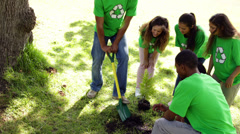 Environmental activists planting a tree in the park Stock Footage