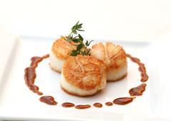 Baked scallops  Stock Photos