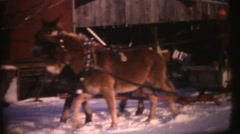 1950's & 60's  vintage, mules pulling sheigh ride Stock Footage