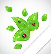 leaves with ladybugs sticking out of the cut paper - stock illustration