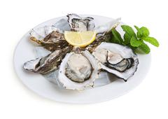 half a dozen oysters - stock photo