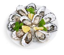 dozen oysters on white plate - stock photo