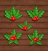 Christmas set holly berry branches on wooden background Stock Illustration