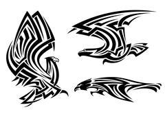 Tribal eagle, haukka ja haukka Piirros