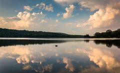 Evening cloud reflections in lake pinchot, at gifford pinchot state park, pen Stock Photos