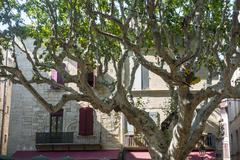 beaucaire - stock photo