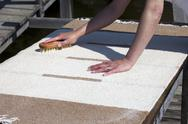 Stock Photo of scrubbing carpet on the dock