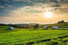 Hazy summer sunset over farm fields in rural york county, pennsylvania. Stock Photos