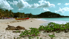 Antigua Jolly Beach 087, exotic plants, a colored boat, palm trees, wide view Stock Footage