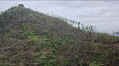 Aerial of tropical palm broken by Haiyan on a hill Stock Footage