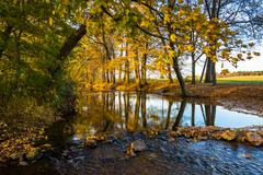 fall reflections in a stream, in rural frederick county, maryland. - stock photo