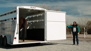 Stock Video Footage of Thoroughbred Horse and Trailer Wide