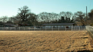 Stock Video Footage of Thoroughbred Horse Ranch Pan -001