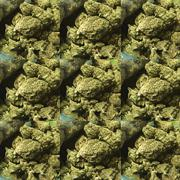 medical marijuana - stock illustration