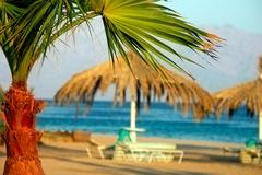 Egypt Nuweiba - beach with palm and umbrella at Reds sea - stock photo