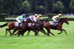 Czech Republic - qualification on The 119th steeplechase Velka Pardubicka Stock Photos