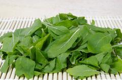Fresh holy basil leaves Stock Photos