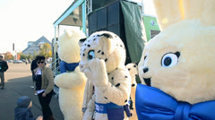 Hare, Snow leopard, Polar Bear - mascots Olympic Games 2014 Sochi Stock Footage