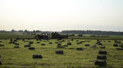 Stock Video Footage of people loading of tractor trailer compressed hay bales
